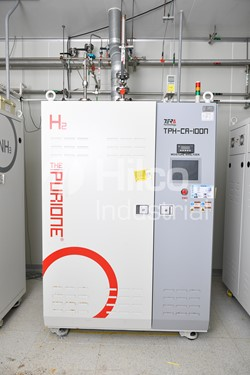1 - TERATECH Model TPH-CA-100N  H2 Purifier (Regen Type)