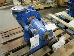 1 - Wareman International C004G01 Sludge Pump